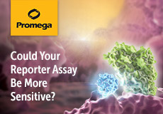 Featured product - Nano-Glo® Dual-Luciferase® Reporter Assay