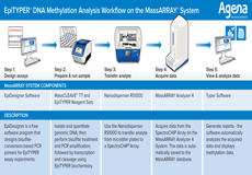 EpiTYPER® DNA Methylation