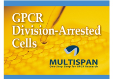 Featured Product - GPCR Division-Arrested Cells