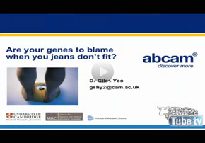 Obesity - Are genes to blame?...