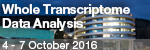 EMBL Advanced Course: Whole Transcriptome Data Analysis