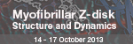 EMBL Conference: Myofibrillar Z-disk Structure and Dynamics
