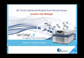 3D Tumor Spheroid-Based Functional Assay...