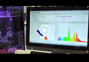 Video - The Power of Spectroscopy - pH...