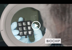 Video - Randox Food Diagnostics - Incr...