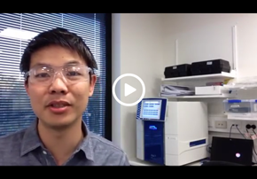 Setting up a 384 Well qRT-PCR Assay for ...