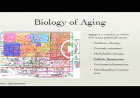 Video - Single Cell Analysis of Senesc...