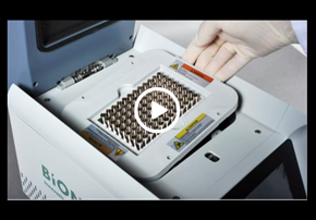 Fast PCR with AllinOneCycler & AccuPower...