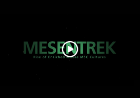 MESENTREK: Rise of Enriched Mouse MSC Cu...