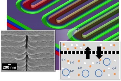 microfluidic.jpeg