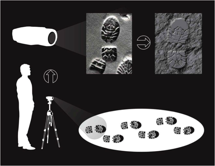 3d Imaging In Forensics Technology Networks