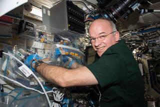 NASA PCR.jpg
