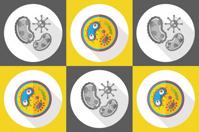 3.11.2016 MIT-Antimicrobe-Peptide_0.jpg