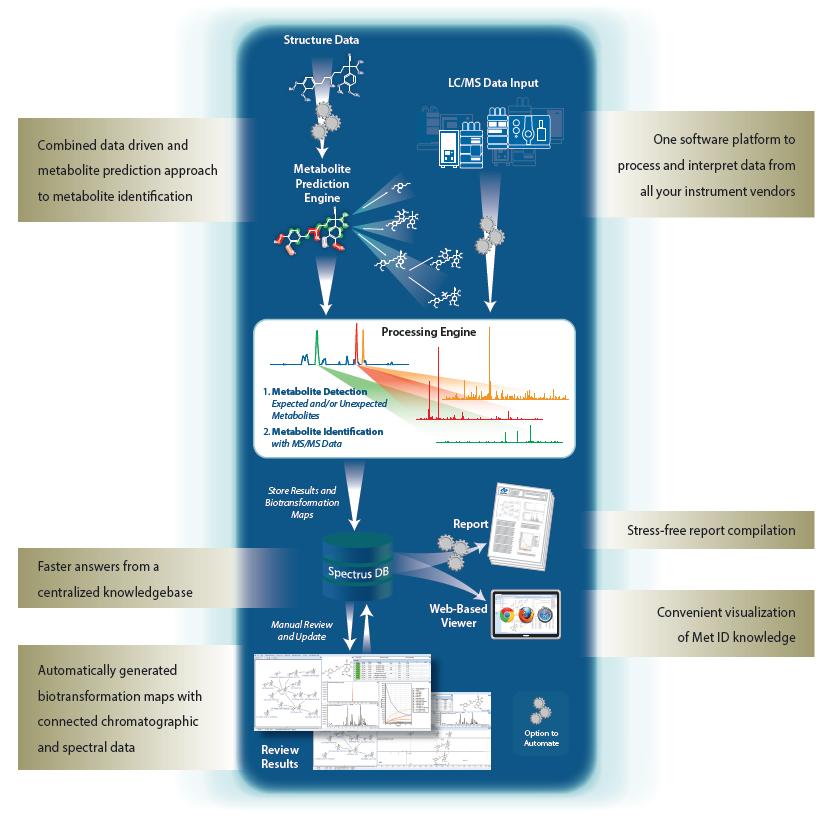 MetaSense workflow image.png