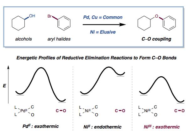 Reaction scheme.png