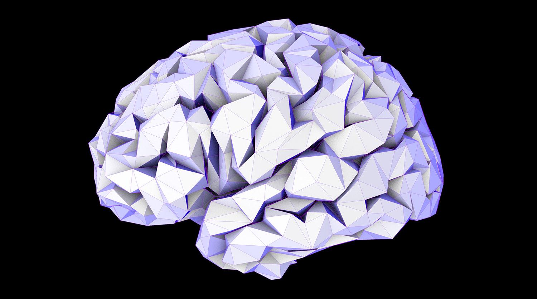 1.9.2016 neurobrain8-large.jpg