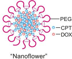 Zhen-Gu-Nanoflower-250.jpg